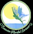 cursos de terapias naturales