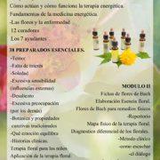 curso flores de bach valencia