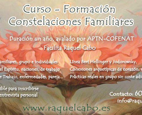 terapia constelaciones familiares, constelaciones familiares formacion