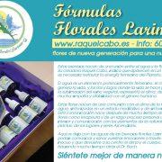 flores de bach, salud natural, salud terapia, medicina natural, esencias florales