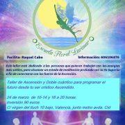 centro de terapias naturales valencia, ascension, doble cuantico, meditacion