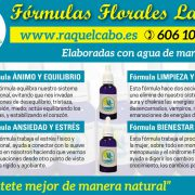 Esencias florales, remedios naturales, terapia floral, terapias naturales
