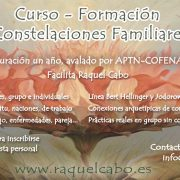 constelaciones familiares curso, constelaciones familiares en valencia, constelaciones familiares, curso constelaciones familiares